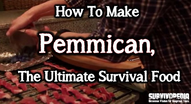 how to make pemmican rimworld
