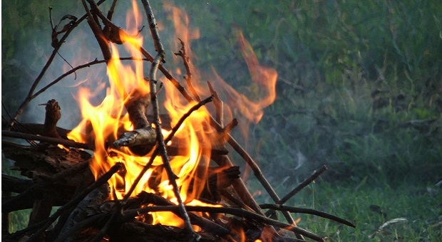 Survival fire camp detail in the wilderness