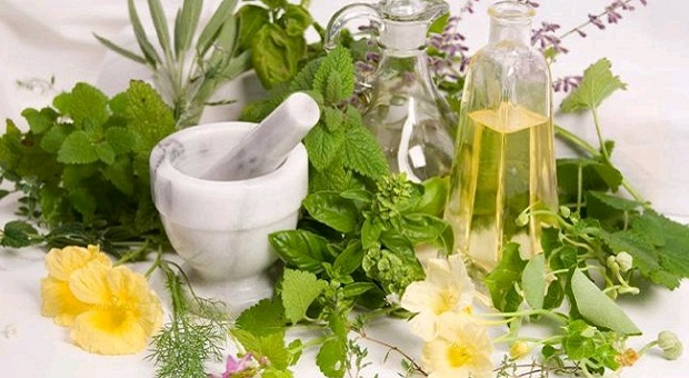 Medicinal plants and bottles