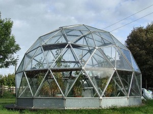 Biodesic dome