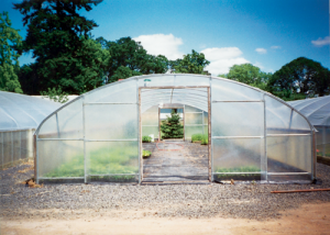 quonset greenhouse
