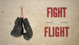 Fight Flight