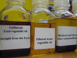 vegetable-oil