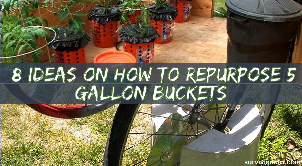 5 gallon bucket projects