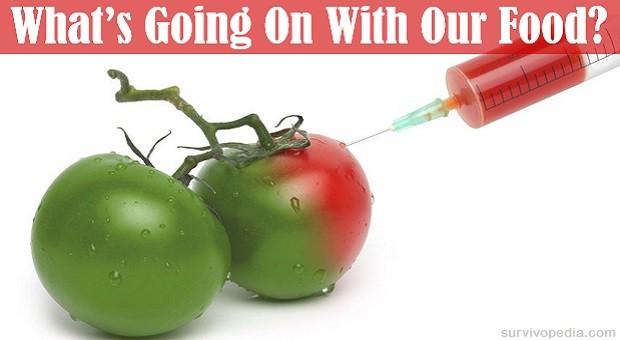 BIG GMOs