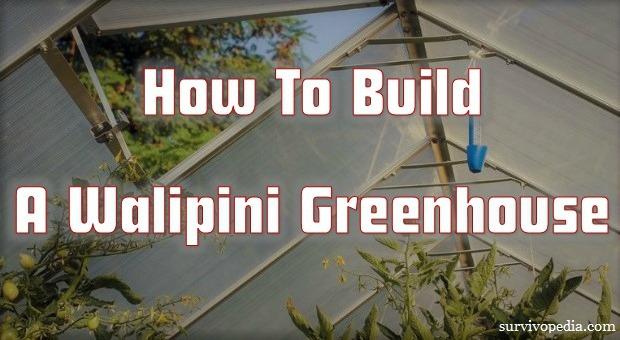 Survivopedia_How_To_build_A_Walipini_Greenhouse (1)