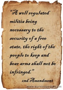 Survivopedia_2nd-Amendment