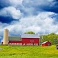 BIG-Farm