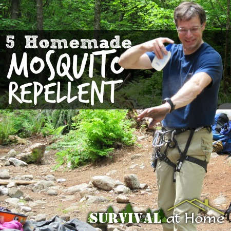 Small - Review - 5-homemade-mosquito-repellents-promo