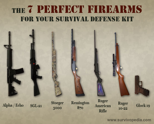 The 7 ultimate firearms for survival their costs survivopedia arms solutioingenieria Gallery