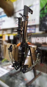 compound-crossbow-bow