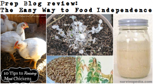Prep Blog Review: Easy Ways to Food Independence
