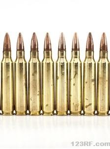 Survivopedia Ammunition Stockpile
