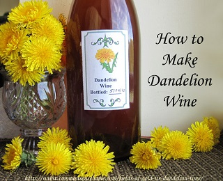 survivopedia dandelion wine