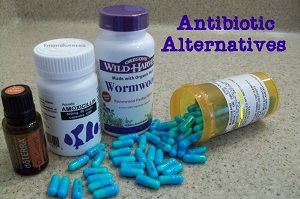 Survivopedia Antibiotics