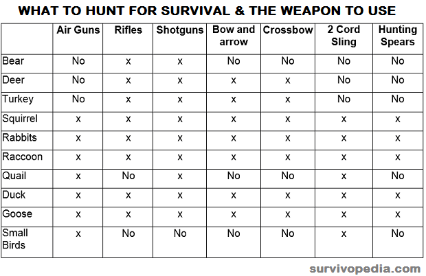 what to hunt