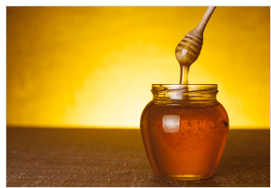 Survivopedia when to harvest honey