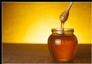Survivopedia when to harvest honey