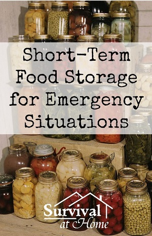 Survivopedia food storage for emergency situations