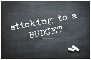 Survivopedia Austerity Budget