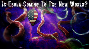 Is Ebola Coming to the New World?