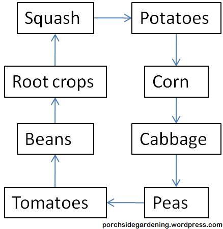 eliot-coleman-crop-rotation