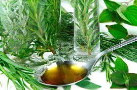 Herbs and teaspoon with herbal medicine