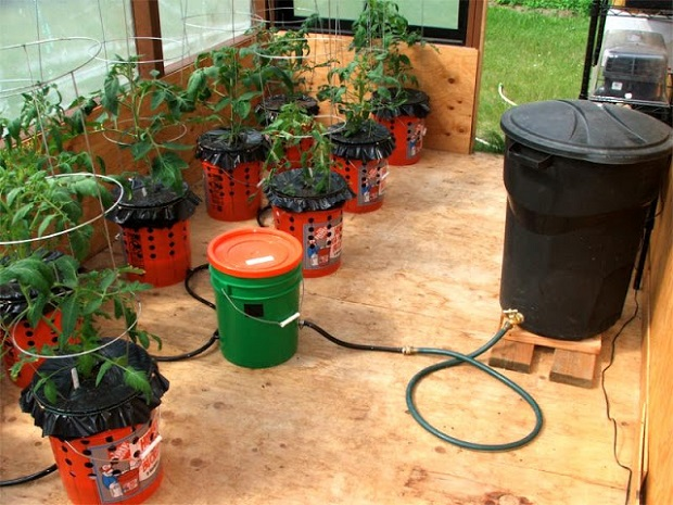 Alaska Grow Bucket System