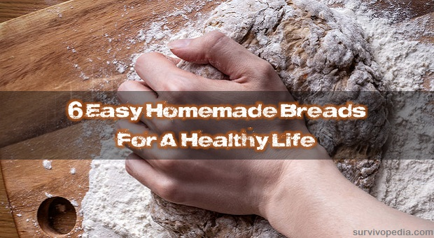 Hands kneading whole wheat bread dough