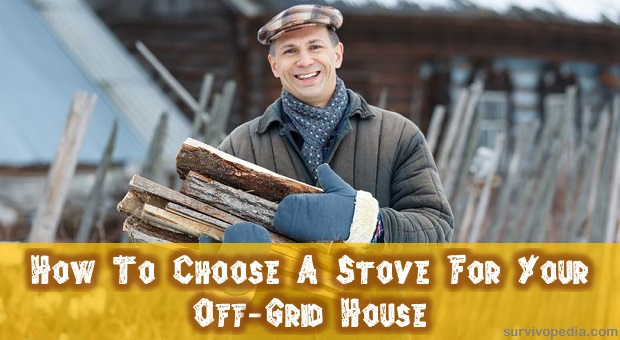 Man holding wood for winter heating