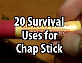 Hand holding chapstick