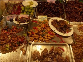 Bugs sold as food