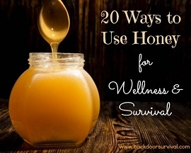 Use honey for survival