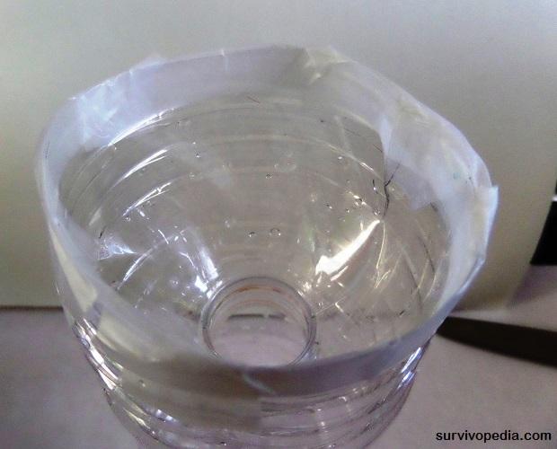 plastic bottle bug trap