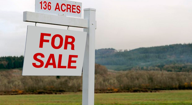Buying land