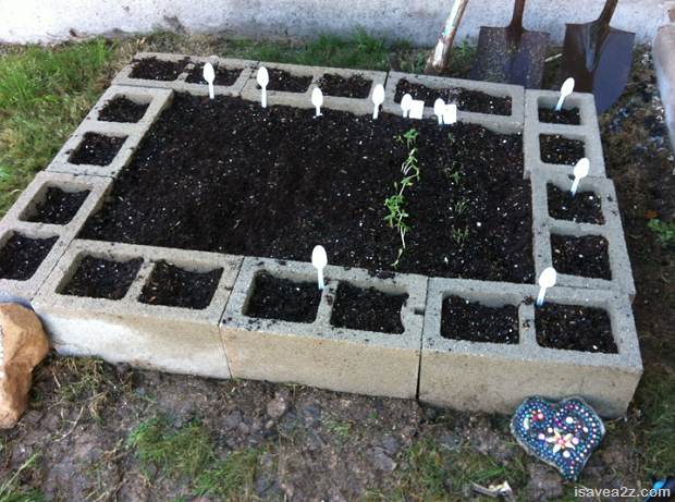 Building Raised Garden Bed With Concrete Blocks Gardenxcyyxhcom