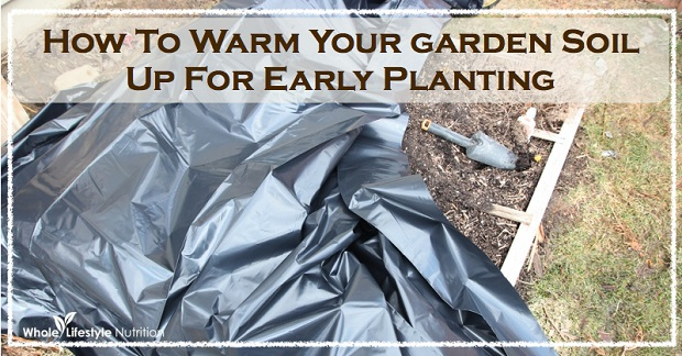 Warm Garden Soil
