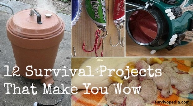 survival projects