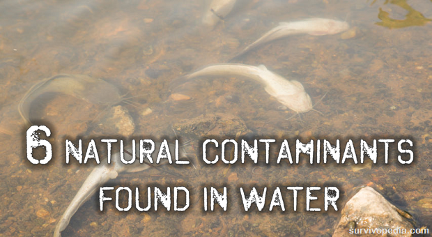 Natural Contaminants