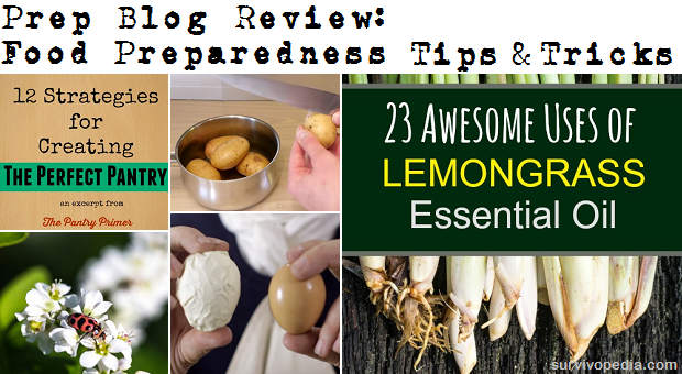 Prep Blog Review 27 June