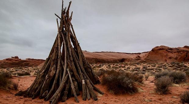 surviving desert