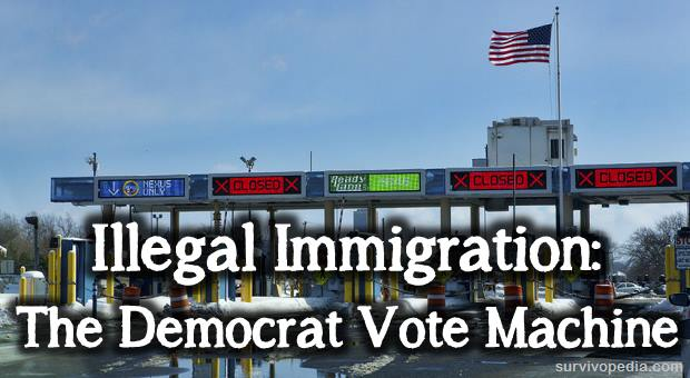 Image result for illegal aliens vote