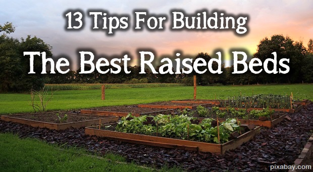 tips for building the best raised beds  survivopedia, Natural flower