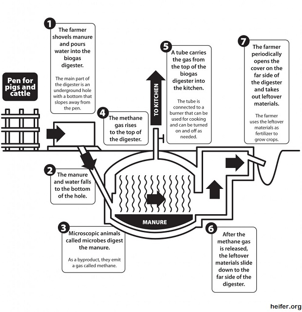 Bio Gas Generator