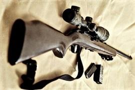 bug out gun