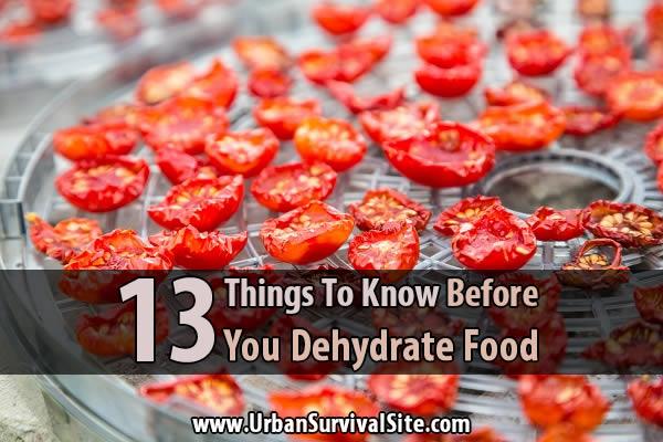 dehydrate food