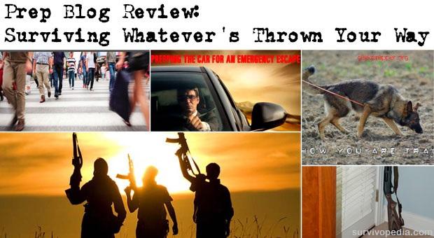 Prep Blog Review 19 Sept 2015