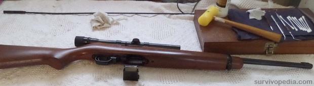 check the semi-auto rifle