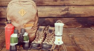 5 Reasons To Make A Bug In Bag