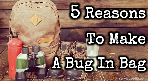 Bug in Bag